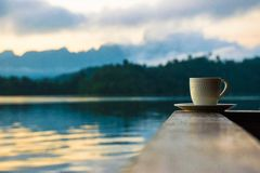 Coffee in the mountain at suratthani Royalty Free Stock Photo