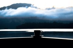 Coffee in the mountain at suratthani Royalty Free Stock Photos