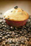 Coffee muffin Stock Images