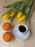 Coffee and muffins on the table. In the background tulips Stock Image