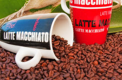 Coffee mug and Coffee beans. Coffee mug filled with Espresso coffee beans Royalty Free Stock Photos