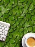 Coffee mug and keyboard. Stock Photos