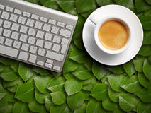 Coffee mug and keyboard. Royalty Free Stock Photo