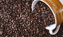 Coffee mug with spilled whole dark roasted coffee beans. Closeup background of whole dark roasted coffee spilling out of coffee mug with text to include mocha Stock Images