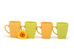 Coffee mugs and daisy Royalty Free Stock Images