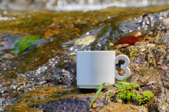 Coffee, the natural waterfall in Thailand. One cup of coffee Rested on a rock waterfall The water beautifully thaland Stock Photo