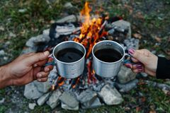 Coffee in nature Stock Images
