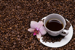 Coffee and orchid Royalty Free Stock Image