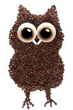 Coffee Owl royalty free stock image