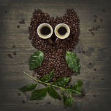 Coffee owl from beens Stock Photos