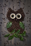 Coffee owl from beens. Leaves and cups Royalty Free Stock Photos