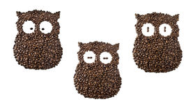 Coffee owls, suffering a sleeplessness. Coffee beans forming an Owl Royalty Free Stock Images