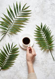 Coffee and palm branches. A female hand holds a cup of black espresso on a white concrete background. Rest in warm Royalty Free Stock Photo