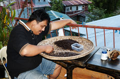 Coffee - Philippines. Local Filipino sorting coffee beans Stock Images