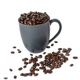 Coffee Please. Fresh roasted coffee beans in a cup.  The most intense cup of coffee yet Royalty Free Stock Image