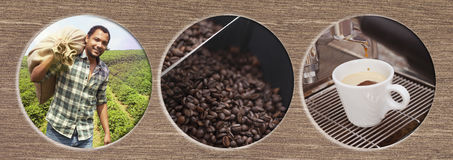 Coffee Process from harvesting to enjoying Stock Image