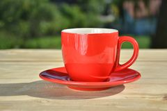 Coffee in red cup  in garden Stock Image