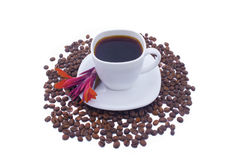 Coffee and red flower. Cup with a red flower and coffee grains the isolated Royalty Free Stock Images