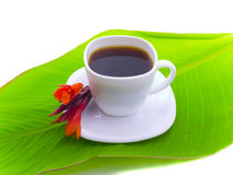 Coffee and red flower on leaf Royalty Free Stock Images