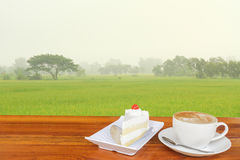 Coffee and Rice field. Stock Photos