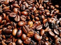 Coffee roast beans full frame, background, wallpaper.  stock image