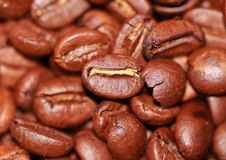 Coffee, Roasted, Beans, Aroma, Cafe Stock Images