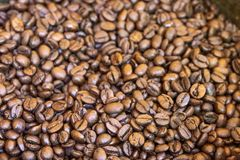 Coffee roasted beans of madagscar. Beans of roasted coffee done today of madagascar royalty free stock photo