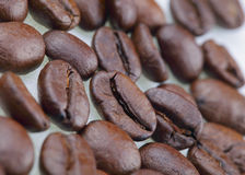 Coffee. Roasted coffee beans Royalty Free Stock Image