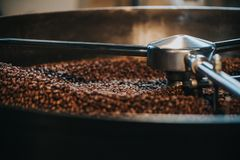 Coffee roaster cylinder roasting and mixing. Coffee beans royalty free stock photography