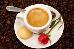 Coffee with  rose Stock Photography