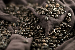 Coffee's grains Royalty Free Stock Photography
