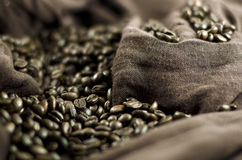 Coffee's grains Stock Image