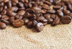 Coffee on sack Royalty Free Stock Images