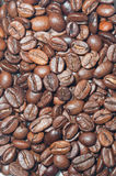 Coffee. Scattered grains of coffee. ideal for background Stock Photography