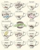 Coffee scheme bonbon, romano, doppio, latte, cortadito, affogato Stock Images