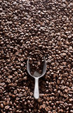 Coffee and scoop Stock Images