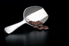 Coffee Scoop and Beans Stock Photos