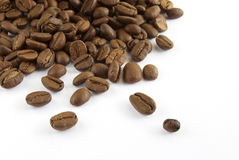 Coffee seed Royalty Free Stock Images