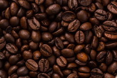 Coffee beans. In cafe for fresh Stock Photography