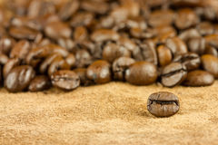 Coffee seed with other seeds Royalty Free Stock Photos