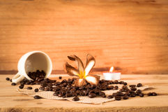 The coffee seed out of the white cup with white dried plumeria o Royalty Free Stock Images