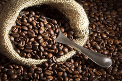 Coffee seed on sack with metal scoop Royalty Free Stock Image