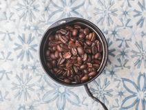 Coffee seeds in coffee grinder. On table at home, natural light Stock Images