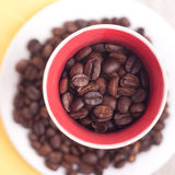 Coffee seeds composition Royalty Free Stock Image