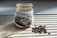 Coffee seeds in transparent glass container on white table with shadows from the blinds Royalty Free Stock Image