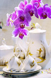 Still life with an living orchid Stock Photos