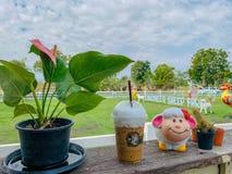 Coffee shop på fårlantgården har en härlig gräsmatta och himmel royaltyfria bilder