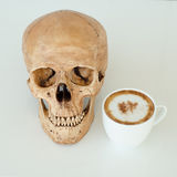 Coffee and skull. A cup of coffee and skull stock images