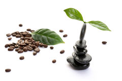 Coffee spa Stock Image