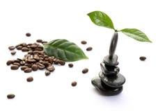 Coffee spa Stock Image